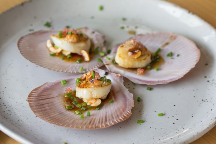 See Need Want Scallops Recipe 1