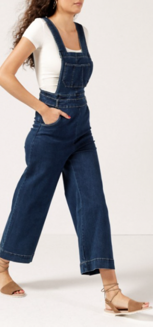Azalea Wide Leg Denim Overalls