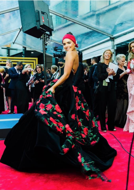 See Need Want Logies Olympia Valance Conilo Gown 1