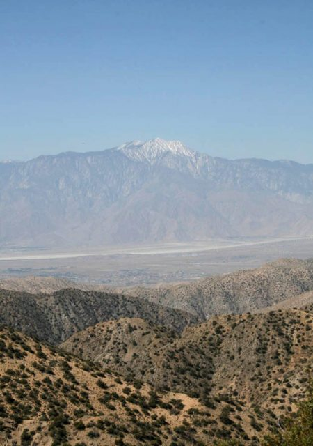 See Need Want Travel Guide To Palm Springs Joshua Tree National Park 2