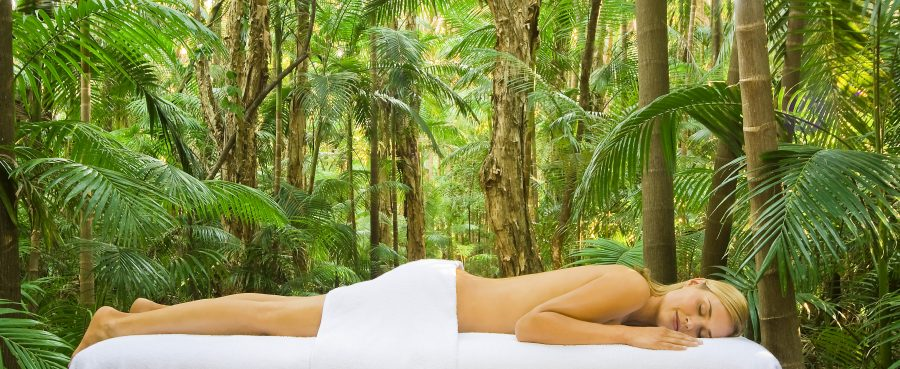 Tropical Getaway Travel Destination Byron At Byron Rainforest Massage