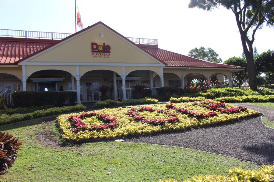 What To Do In Hawaii Travel Story Family Holiday Dole Plantation 1